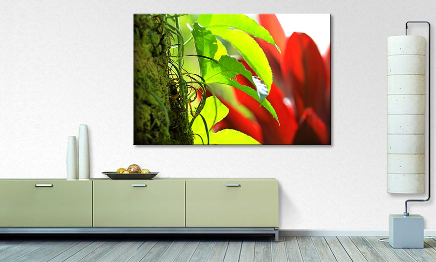 Art print Red Green Nature
