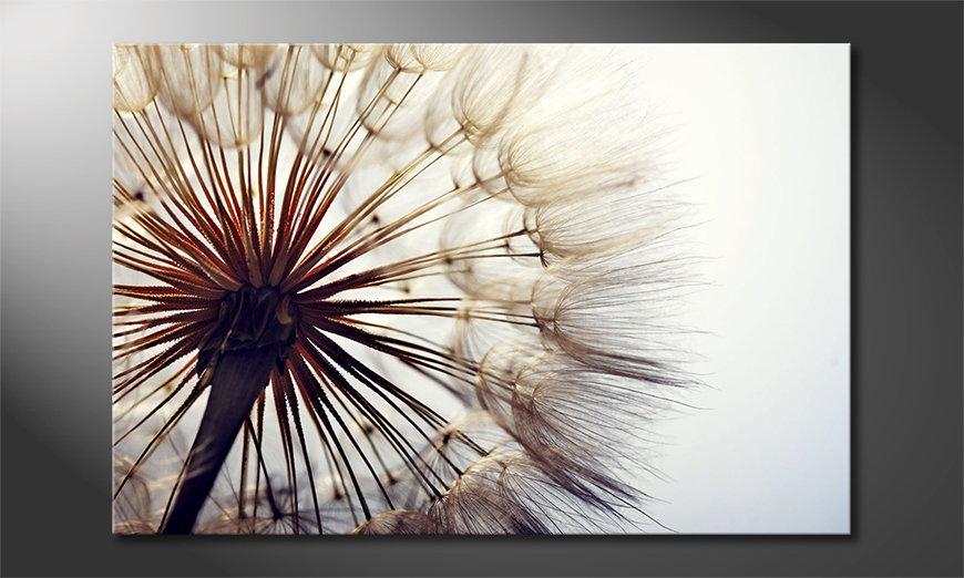 Canvas Big Dandelion