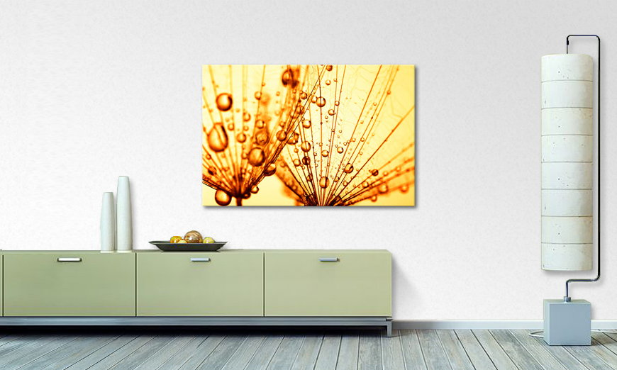 Canvas print Dandelion Seed
