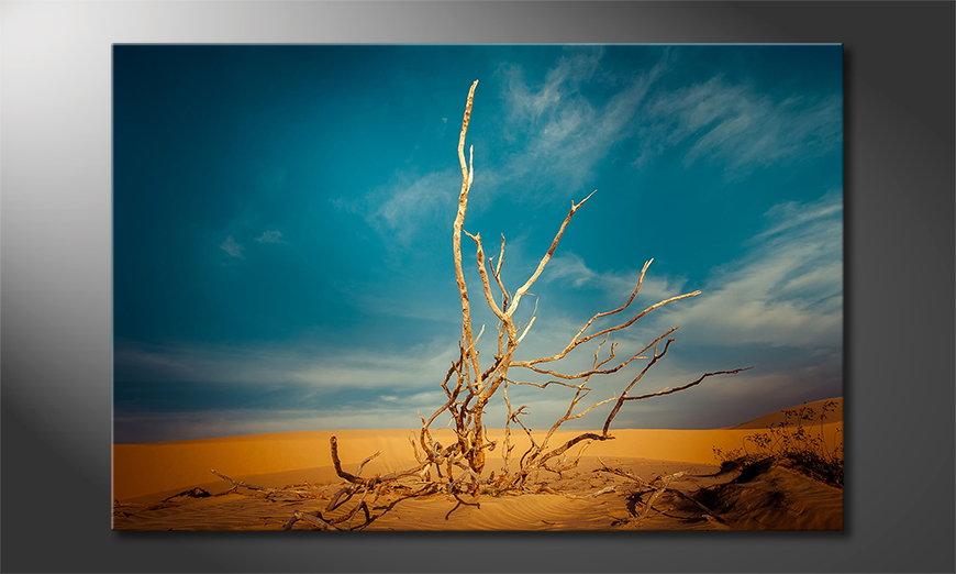Canvas print Desert Landscape