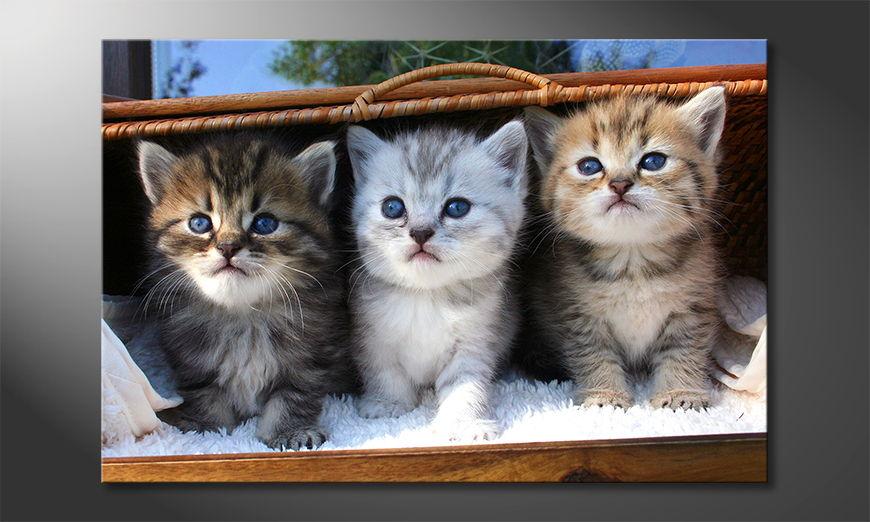 Canvas print Three little friends