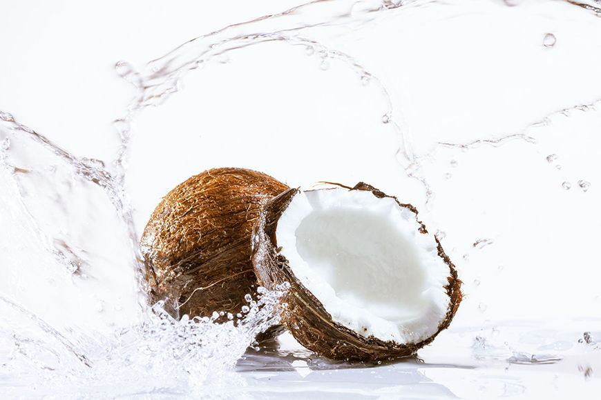 Photo wallpaper Coconut from 120x80cm