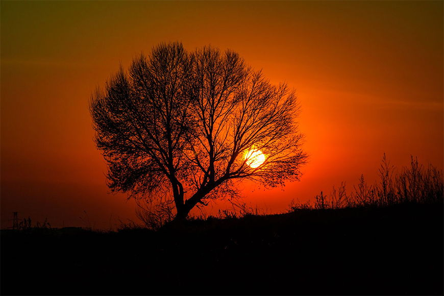 Photo-wallpaper Rural sunset from 120x80cm