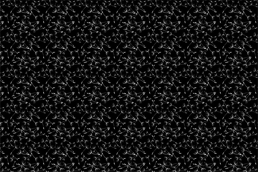 Wallpaper Dandelion dream from 120x80cm