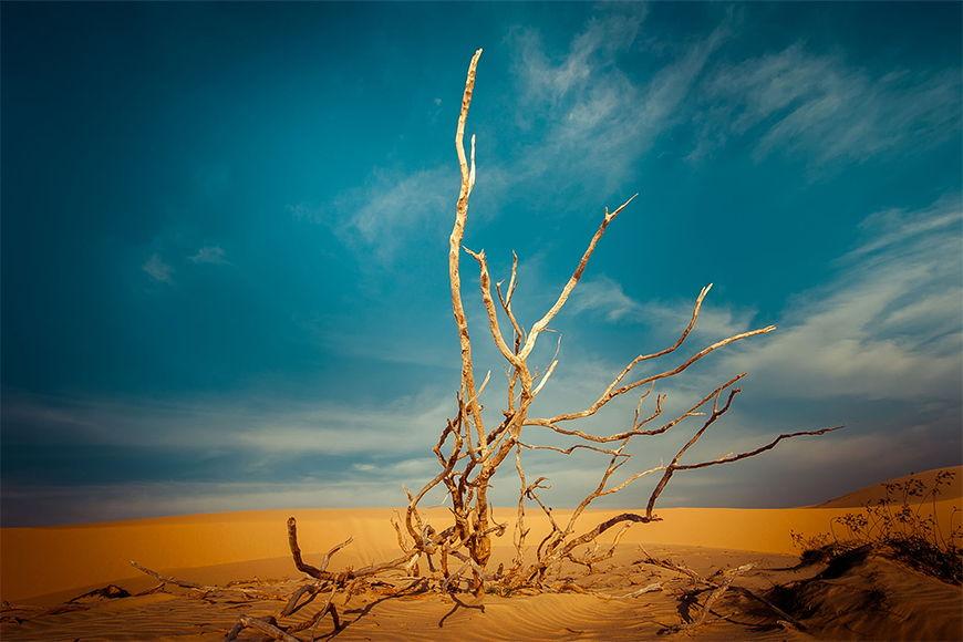Wallpaper Scenic desert from 120x80cm
